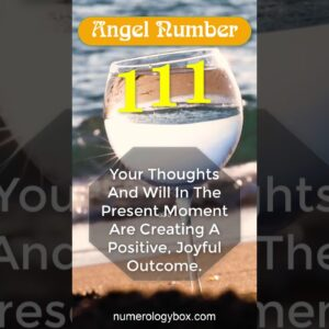 111 Angel Number Meaning Message | Part 1 | Numerology Box #Shorts