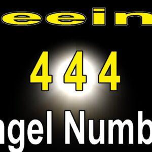 Angel Number 444 Message Short | Numerology Box #shorts