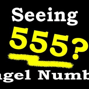 555 Angel Number Meaning Message | Part 3 | Numerology Box #Shorts