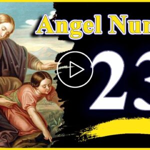 Angel number 23 Spiritual And Sybolism, Numerology | Numerologybox