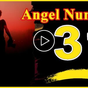 Angel Number  31 Spiritual And Sybolism Numerology | Numerologybox