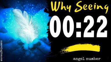 Angel Number 0022 spiritual and sybolism | The reason Why are You Seeing 0022?