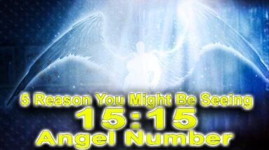 Top 5 Reason You Might Be Seeing The Angel Number 1515