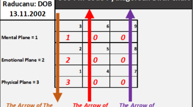 the golden expression number of emma raducanu